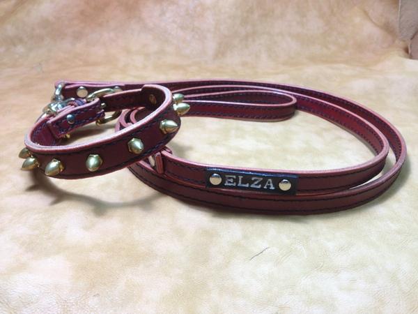 ELZAちゃん (2).JPG